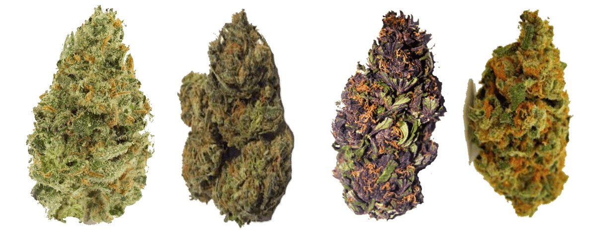 Dry Flower, Herb, Buds, Nuggs