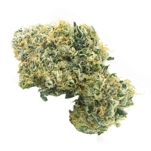 Lemon Lime Marijuana Strain