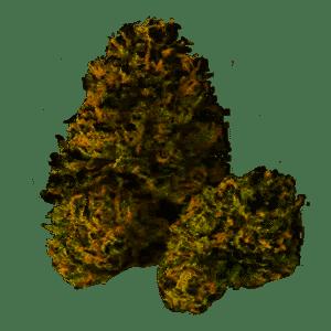 Wookie Girl Marijuana Strain