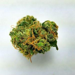 Mango Kush Marijuana Strain