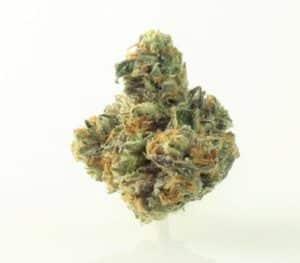 Chunky Diesel Marijuana Strain
