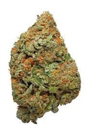 sweet kush strain